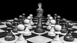 Coaching entrepreneurs : devenez leader de plusieurs niches de marché